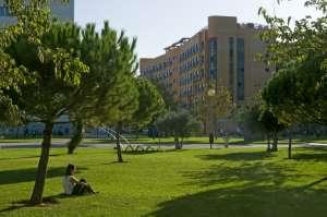 Zomerschool in Spanje voor tieners 5